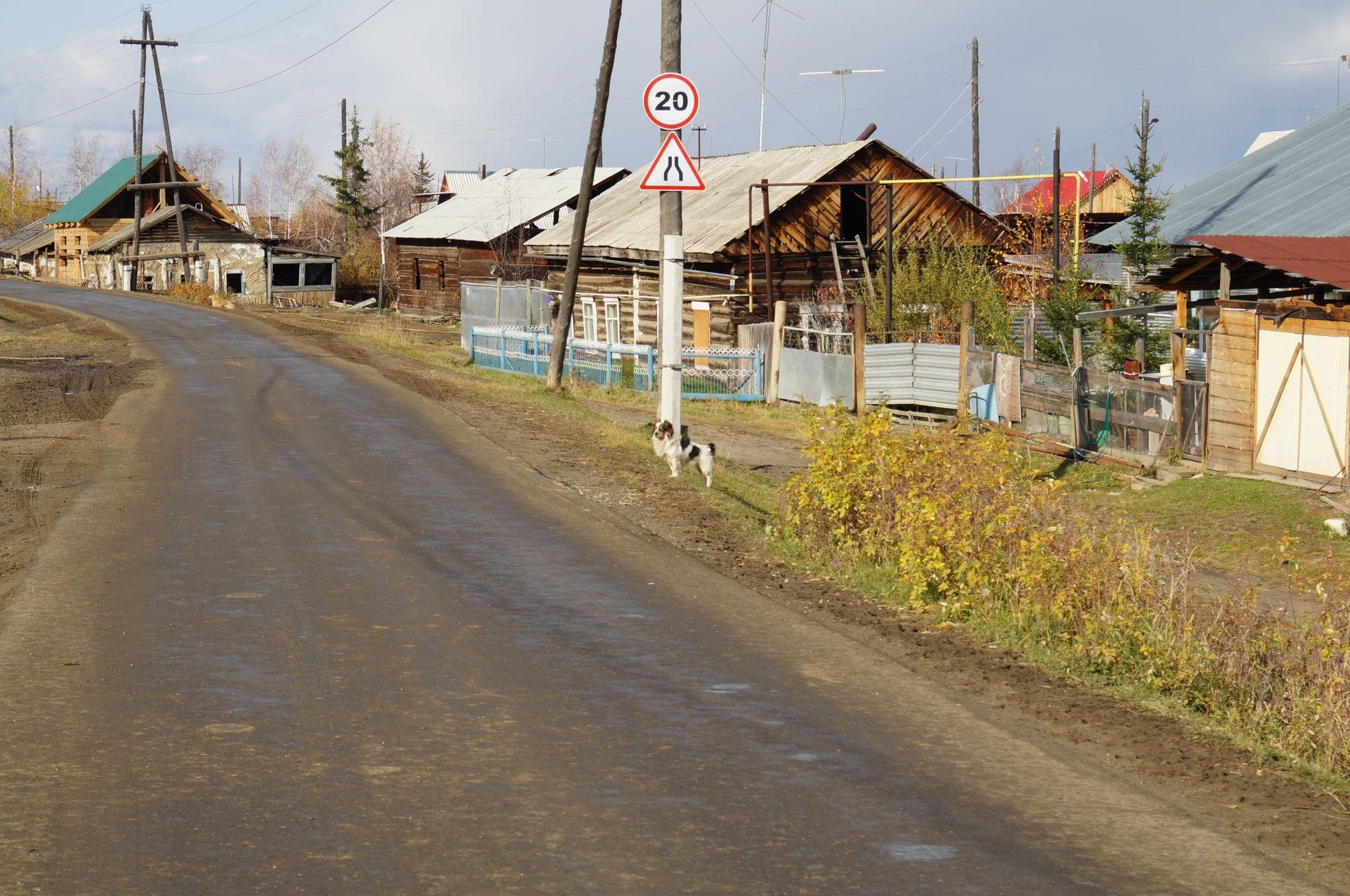 Села на сучек 2 фотография